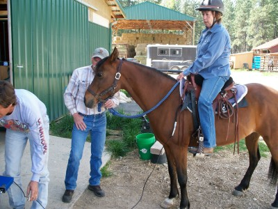 Personal Saddle Fitting in Corvallis, MT